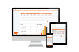 Beef Monitor, Mobile and Web Application created by VOiD Applications.